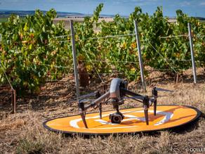 Commande atypique de plans vidéo par drone du vignoble de Champagne pour National Geographic