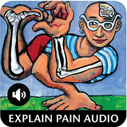 Explain Pain Audio Book available