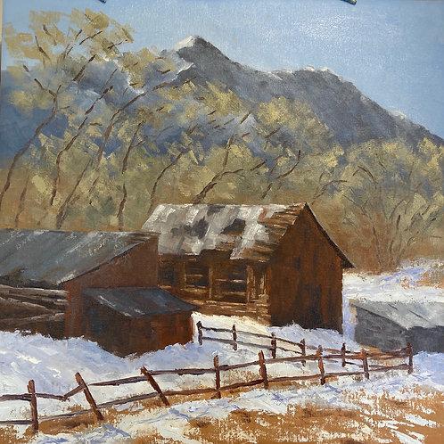 Buena Vista Barns