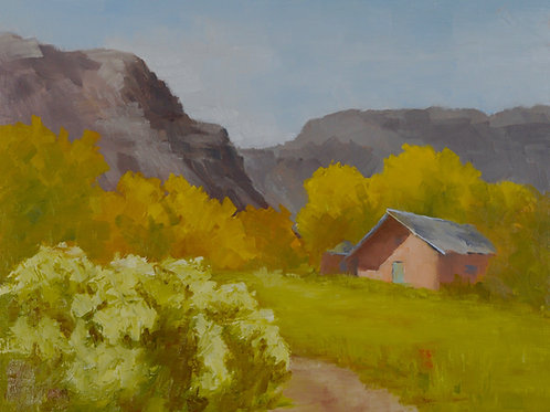 Abiquiu Fall Color
