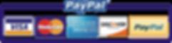 transparent-logo-credit-card-2.png