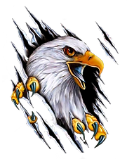 harley-eagle.png