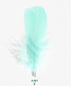 """""""strong with purpose""""  feather"""