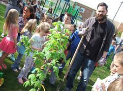Tree Planting SW Messenger