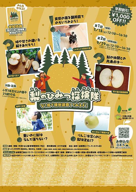 nashinohimitsu_chirashi.jpg