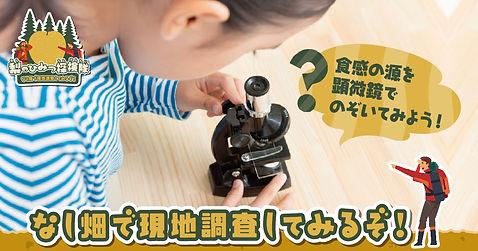 nashinohimitsu_3.jpg