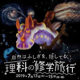 スクリーンショット 2021-08-13 17.02.15.jpg