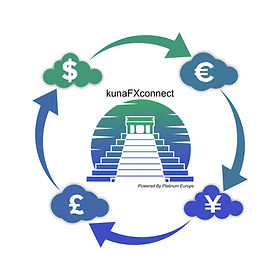 ERP Kuna application Exchange rate, which will help business to make automatic exchange rates imports to their ERP's