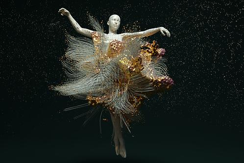 Fine Art Print - Paul Marlier / Motion Capture en apesanteur
