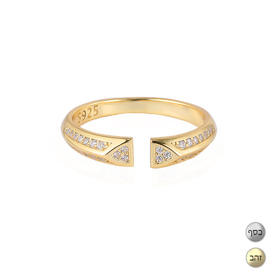 TIWIP.co.il   טבעת כסף 925 - טבעת אבישג