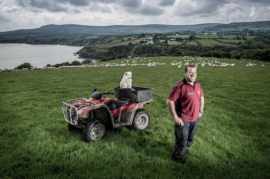Neil Perkins, Sheep Farmer