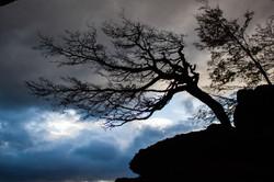 blury-preloadresized-preloadMorro dos ventos uivantes blury-preloadresized-preloadQuente e frio Morr
