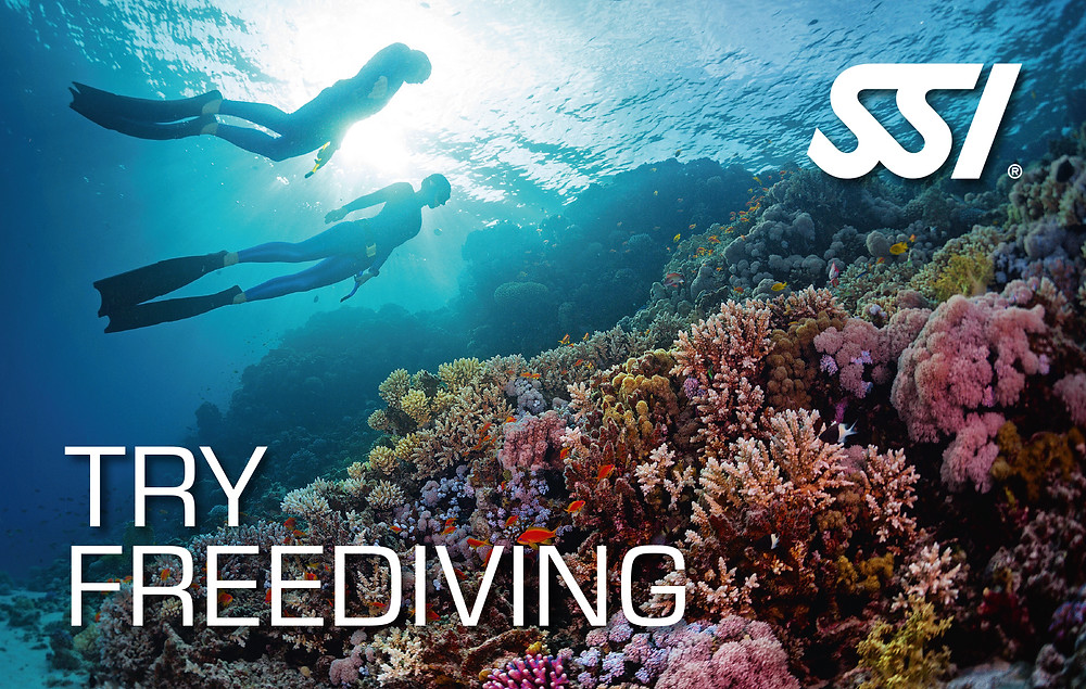 Try Freediving SSI Course