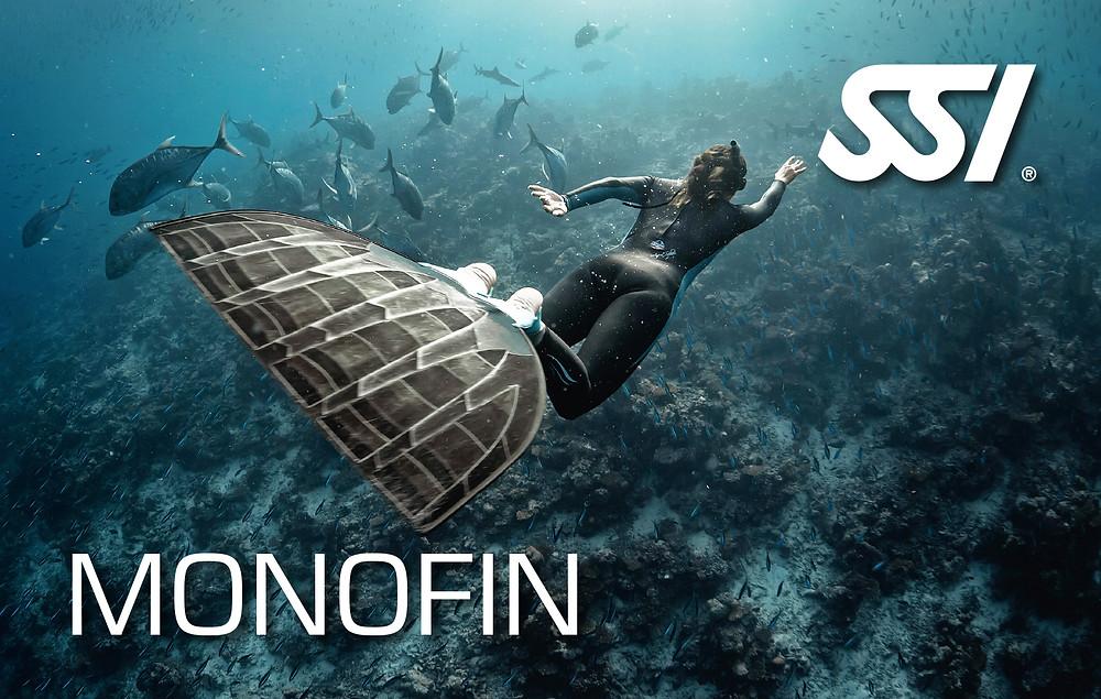 SSI Monofin / Like A Fish