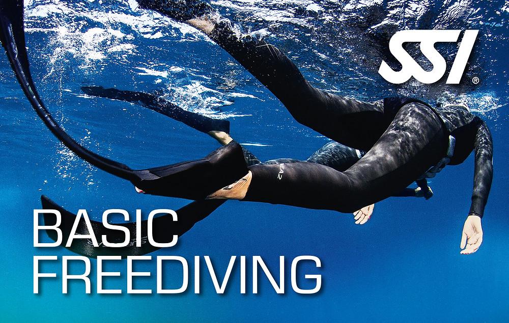 SSI Basic Freediving / Like A Fish