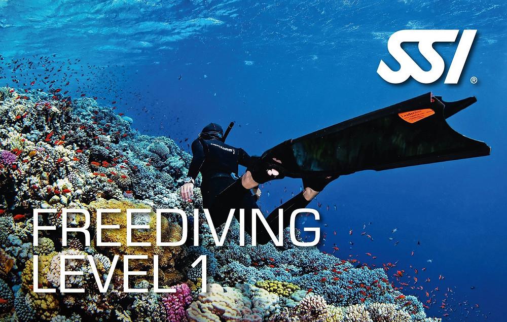 SSI Freediving Level 1 / Like A Fish