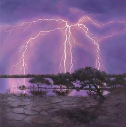 Light Show Over the Mangroves