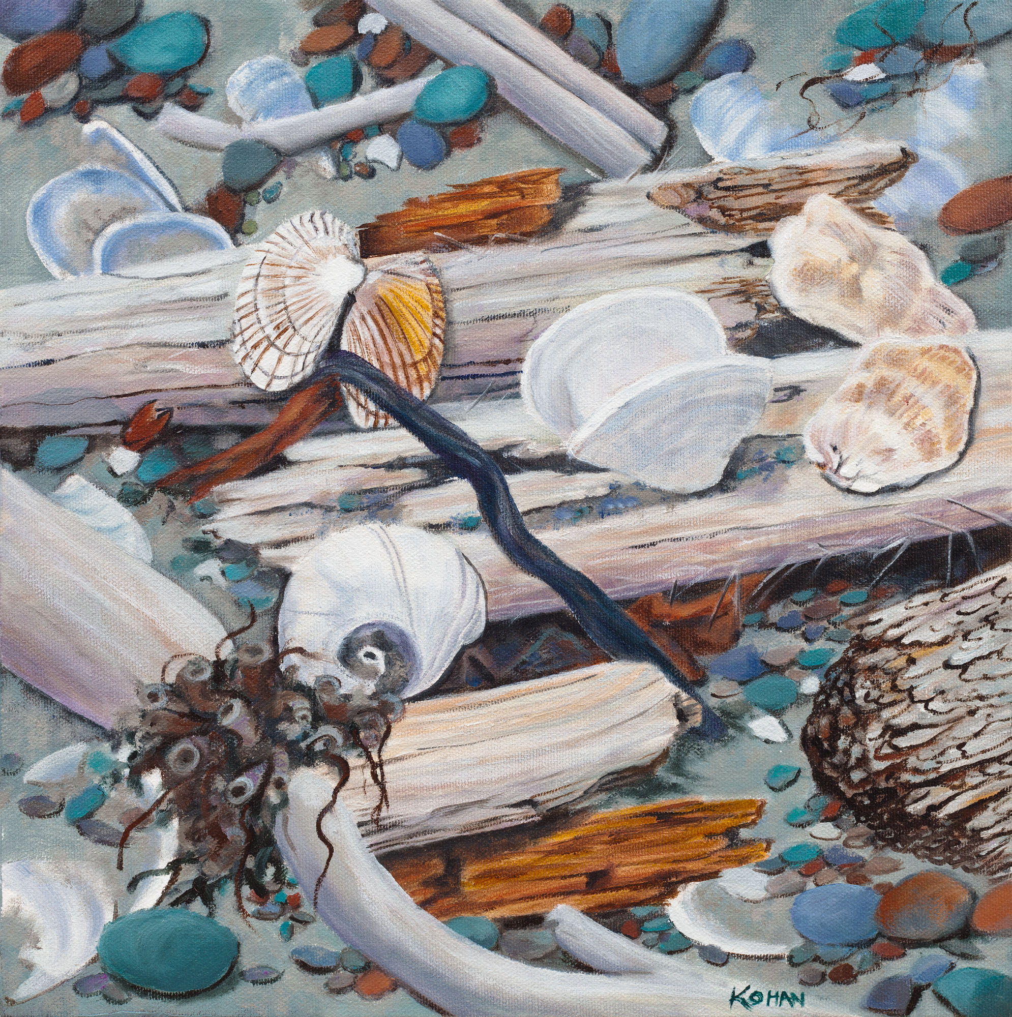 Jewels of the Sea-Driftwood