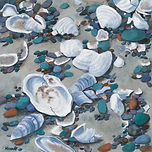Jewels of the Sea-Shells, OIl 30 x 30.jp
