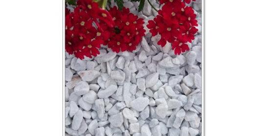Grys Bianco Carrara 8-16 mm