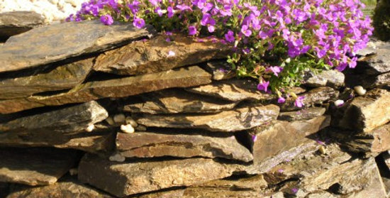 Kamień szarogłaz