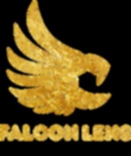 FalconLens-Award_Logo_only_Gold.png