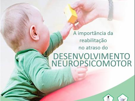 Desenvolvimento Neuropsicomotor Normal (DNPM normal)