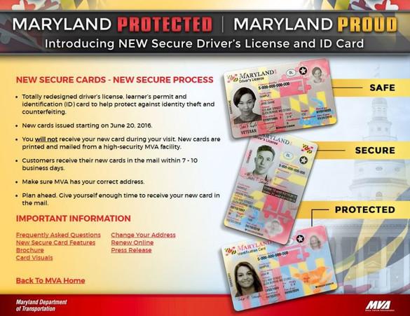 new-md-license2-800x617.jpg