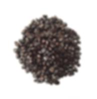 Website Product Pic - Ethiopia Beans Dar