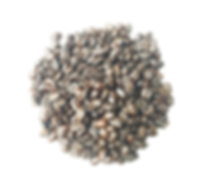 Website Product Pic - Ethiopia Beans Med