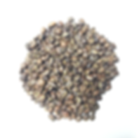 Website Product Pic - Ethiopia Beans Lig