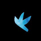 青い鳥.png