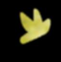 緑の鳥.png
