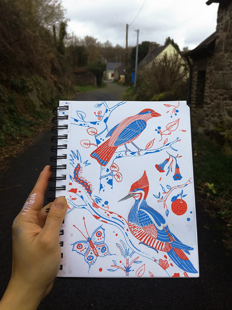 birds-sketchbook-illustration-artist-boo