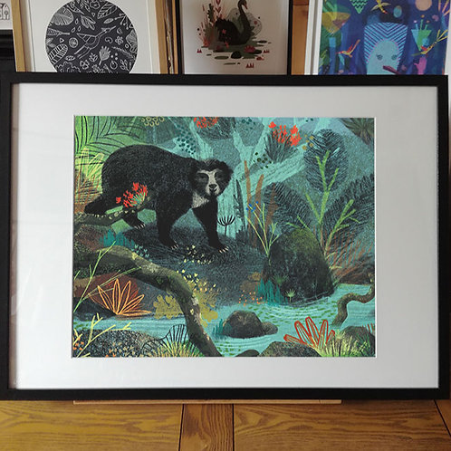 Spectacled Bear - Fine Art Print