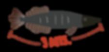 piracuru-fish-pearson-catalina-carvajal-