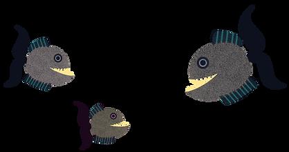 piranha-fish-illustration-pearson-catali