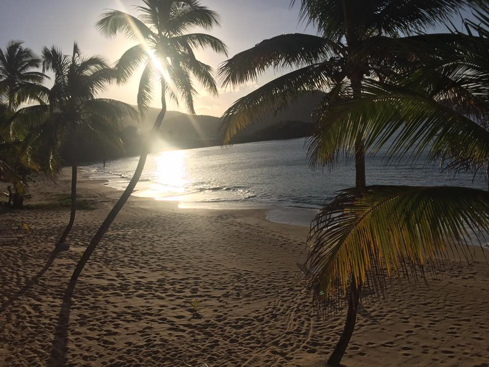 One of Curtain Bluff's beaches...  Elli Travel is a New York Luxury Travel Agency specializing in leisure travel for families, couples & groups.  Proud members of Virtuoso, Four Seasons Preferred, Rosewood Elite, Belmond Bellini Club, Starwood Luxury Privelages and Ritz Carlton Stars