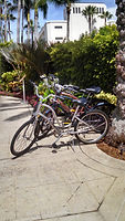 Four Seasons Palm Beach, complimentary bikes. Elli Travel Group is a New York based travel agency specializing in luxury travel. How can I upgrade my Four Seasons Hotel Experience? Through Elli Travel Group's Virtuoso Membership clients receive complimentary amenities.  We are proud members of Virtuoso, Rosewood Elite, and Starwood Luxury Privileges.