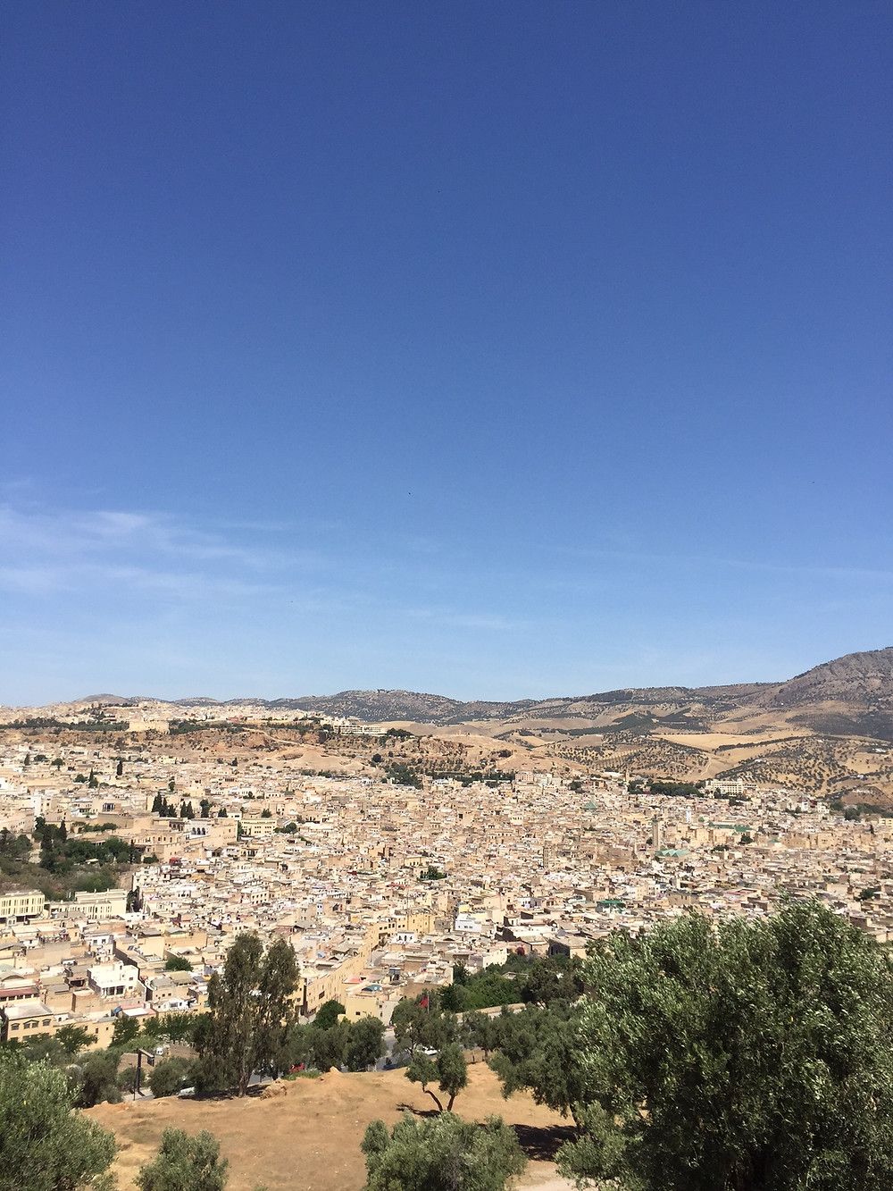 A view of Fez....  Elli Travel Group is a New York Travel Agency based in Larchmont New York. Proud members of Virtuoso, Rosewood Elite and Starwood Luxury Privileges.