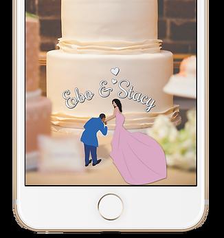Standard Wedding Geo-Filter