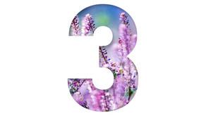3 druhy ženské bylinné napářky přizpůsobené zdravotnímu stavu ženy