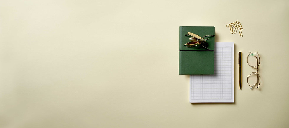 a workspace with gold pen, gold paper clips, & a green book and metal bug atop a pad of graph paper