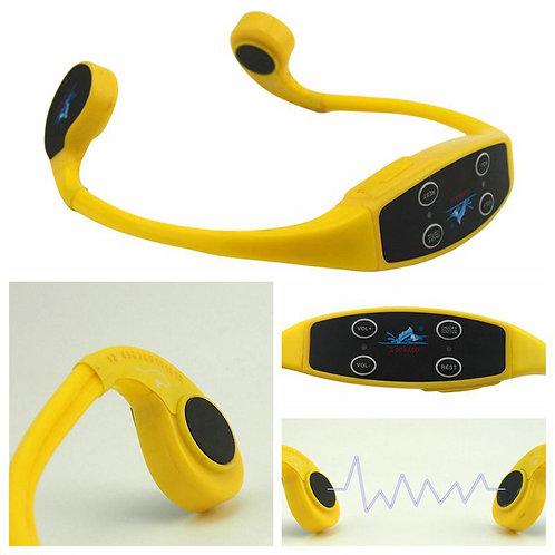 10 Headset 700 + 1 FM 100 Transmitter
