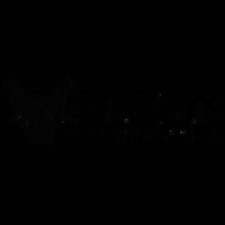 StoneGenericBlack (1).png