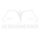 DCR 20118 Logo Gray2-01.png