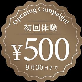 初回体験500円キャンペーン
