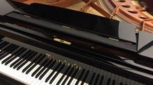 Полным ходом идет подготовка к концертам в Москве нашего фортепианного дуэта