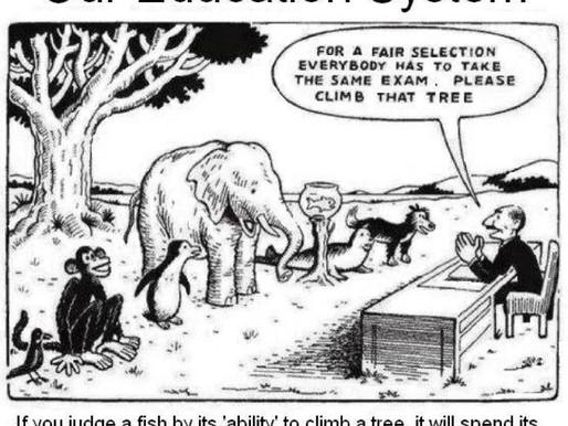 יש לנו פיל בכיתות- איך לשנות את החינוך ואת הסביבה בה הוא מתרחש? שתי עצות
