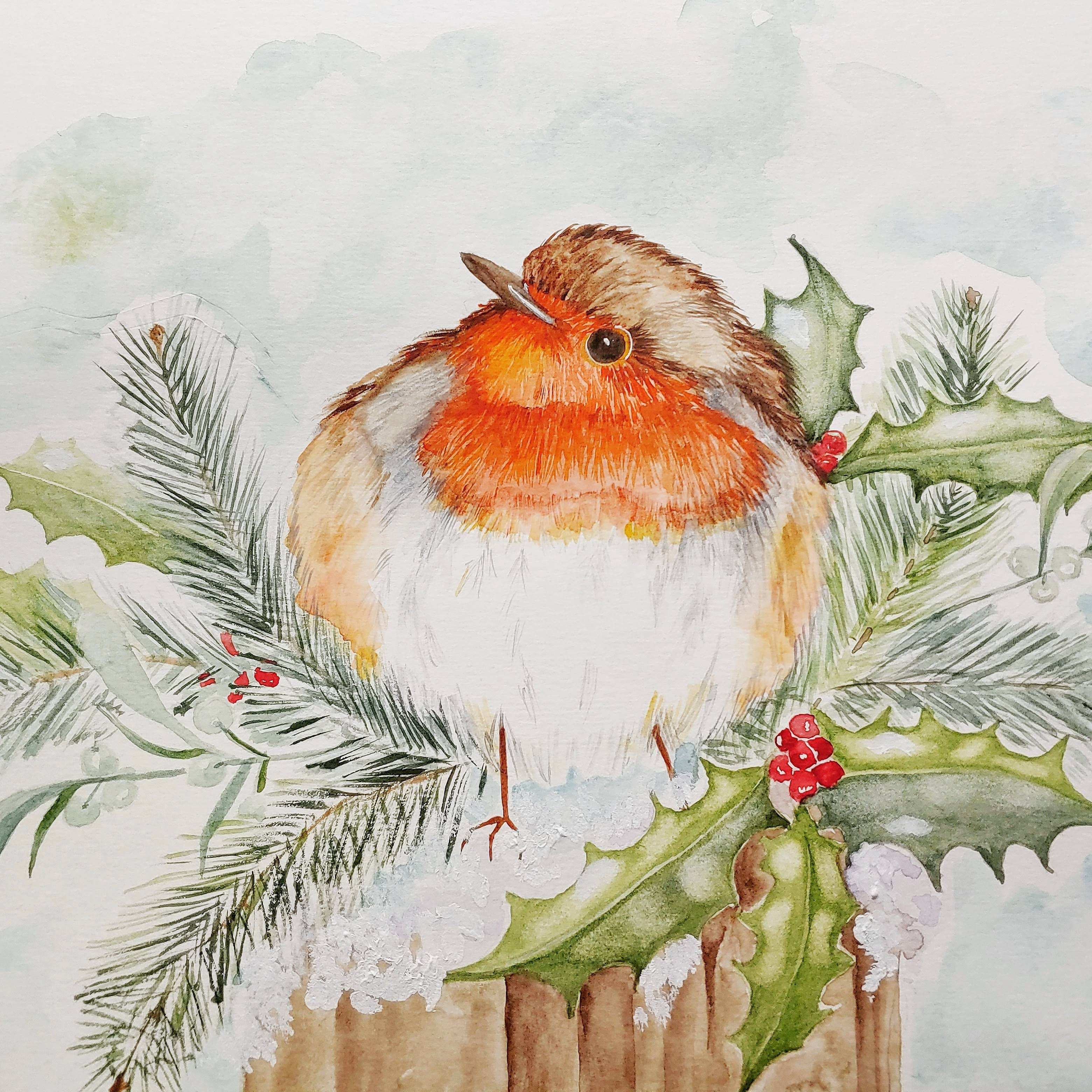 Little Red Breast Robin
